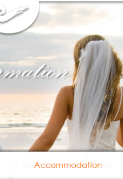 want hotels married documents